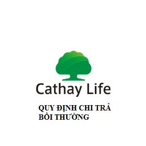Cathay Life - quy trình chi trả bồi thường